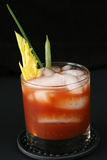Bloody Mary California-Style. Bloody mary cocktail with celery, chives, green beans Stock Images