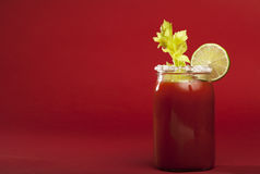 Bloody Mary Cocktail Royalty Free Stock Image