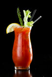 Bloody Mary cokatil Royalty Free Stock Photos