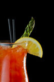 Bloody Mary cokatil Royalty Free Stock Image