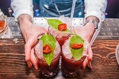Bloody mary dei cocktail Immagini Stock Libere da Diritti