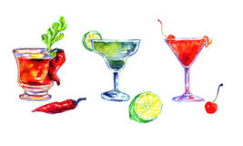 Bloody Mary, Margarita and Cosmopolitan. Hand Painted Watercolor Illustration  Set of Cocktails: Bloody Mary, Margarita and Cosmopolitan Royalty Free Stock Photography