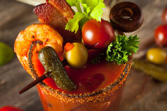 Bloody Mary picante da vodca do bacon caseiro Foto de Stock Royalty Free