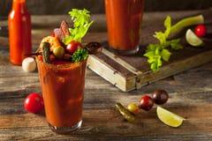 Bloody Mary picante da vodca do bacon caseiro fotografia de stock royalty free