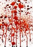 Bloody splashes. On white background Stock Image