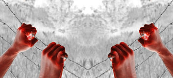 Bloody tortured hand grasping desperately barbed wires. Artistic blood tortured hands grasping desperately barbed wire Royalty Free Stock Photo
