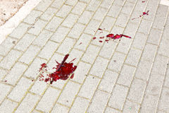 Bloody trail. Large blood trails on the street pavement Stock Image