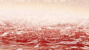 Bloody water. Closeuo of red foamy water Royalty Free Stock Images