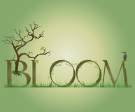Bloom Royalty Free Stock Photo