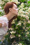 Bloom Stock Images