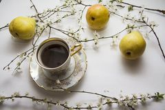 Bloom with cup of coffee Royalty Free Stock Images