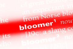 Bloomer. Word in a dictionary.  concept Stock Photography