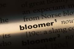 Bloomer. Word in a dictionary.  concept Royalty Free Stock Photo