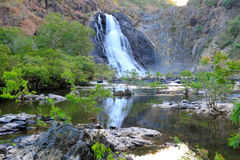 Bloomfield falls, cooktown, queensland, australia Stock Photography