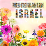 Bloomimg Israel Royalty Free Stock Photos