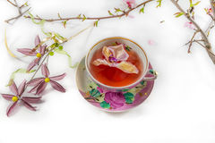 Blooming almond tree branch and tea-cup still life Stock Photo