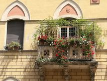 Blooming balcony of a building to the center of Rome in Italy. Yellow ancient building. Sunny day. Summertime. Ancient building. Facade with a balcony. Antique Stock Image