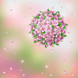 Blooming ball and flying petals Royalty Free Stock Photo