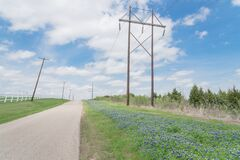 Free Blooming Bluebonnet Along Country Road With White Picket Fence And Row Of Power Pylons In Ennis, Texas, USA Royalty Free Stock Photo - 180846735