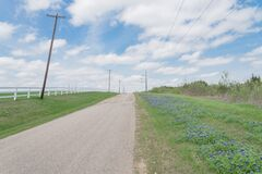 Free Blooming Bluebonnet Along Country Road With White Picket Fence And Row Of Power Pylons In Ennis, Texas, USA Stock Photo - 180846790