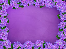 Purple hydrangea border. Border of purple hydrangeas on a gradient background stock illustration