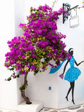 Blooming bougainvillea Royalty Free Stock Photo