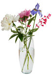 Blooming bouquet of flowers in a transparent vase with water. Stock Photos