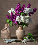 Blooming branches of lilac in vase and dollars Stock Images