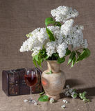 Blooming branches of lilac in vase Stock Photography