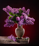 Blooming branches of lilac in vase Stock Image