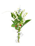Blooming bush. On the white Stock Photography