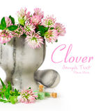 Blooming clover in a stone mortar Royalty Free Stock Photography