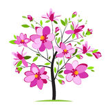 Blooming colorful tree. Blossoming magnolia tree on white background royalty free illustration