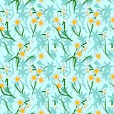 Blooming daffodils on blue background seamless Royalty Free Stock Photos
