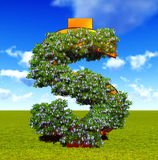 Blooming dollar sign Stock Photos