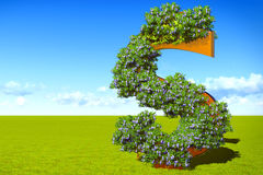Blooming dollar sign Royalty Free Stock Images