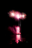 Blooming firework of international firework festival. By mixed color style Royalty Free Stock Photo