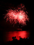 Blooming firework of international firework festival. Red Blooming firework of international firework festival Stock Photos