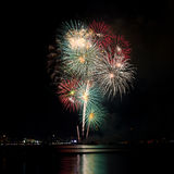 Blooming firework mixed color of celebration night Stock Image