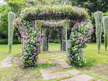 Blooming flower arch Stock Photography