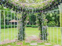 Blooming flower arch Royalty Free Stock Images