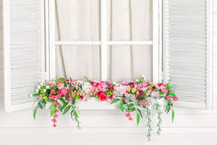 Blooming flower bed under the window. Windowsill with flowers. Blooming flower bed under the window. Nursery. White window. Windowsill with flowers royalty free stock photography