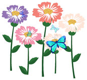 Blooming flower with butterflies Stock Images