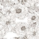 Seamless pattern of wild roses blossom branch isolated on white. Vintage botanical hand drawn illustration. Spring. Blooming flower. Set collection. Hand drawn stock illustration
