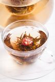 Blooming Flower Tea Royalty Free Stock Images