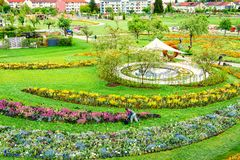 Blooming flowerbeds in Park of Schwabisch-Gmuend, Germany. Urban nature in spring.Flowers in bloom in circled flowerbeds.