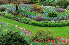 Blooming flowers in butchart garden royalty free stock images