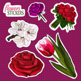 Blooming Flowers Collection. Royalty Free Stock Images