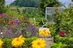 blooming flowers at cottage garden royalty free stock photo
