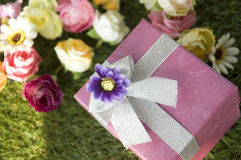 Blooming flowers gift box Stock Image